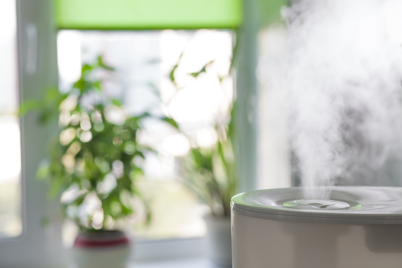 humidifier at home
